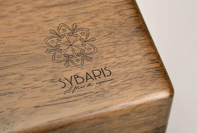sybaris-a-fleur-de-copeaux-logo-ebeniste-by-save-severine-allart